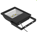 Picture of Exterior 100W LED Floodlight  Azoogi Lighting