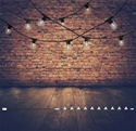 Picture of FESTOON PARTY STARTER KIT (LS89110) Oriel Lighting