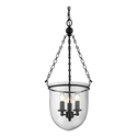 Picture of ALEXA Lantern Pendant Black with Clear Glass (31325) Domus Lighting