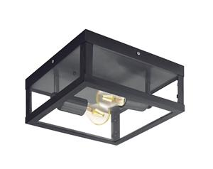 Picture of Alamonte 1 Exterior Wall/Ceiling Light (94832) Eglo Lighting