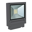 Picture of Flash 20W FloodLight (FLASH-20) Domus Lighting